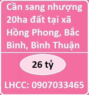 Cần sang nhượng 20ha đất tại xã Hồng Phong, Bắc Bình, Bình Thuận, 26 tỷ; 0907033465