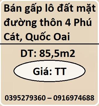 Chính chủ bán gấp lô đất mặt đường thôn 4 Phú Cát, Quốc Oai, 0916974688