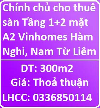 Chính chủ cho thuê sàn Tầng 1+2 mặt A2 Vinhomes Hàm Nghi, 0336850114